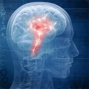 Ein durchsichtiger Kopf, rot leuchtender Bereich im Zentrum